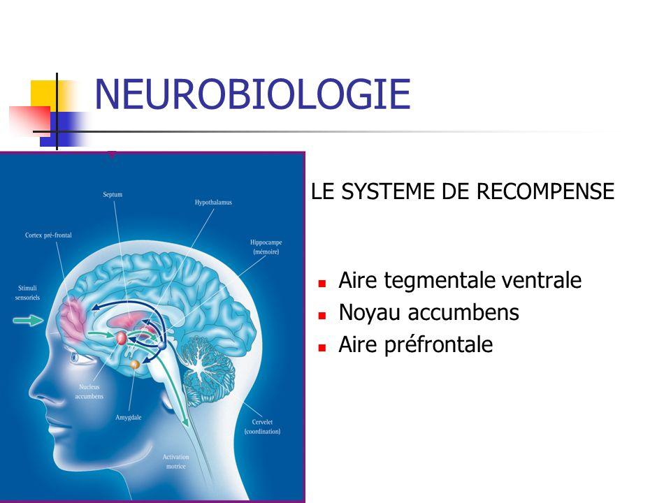 LE SYSTEME DE RECOMPENSE Aire tegmentale ventrale Noyau accumbens Aire préfrontale