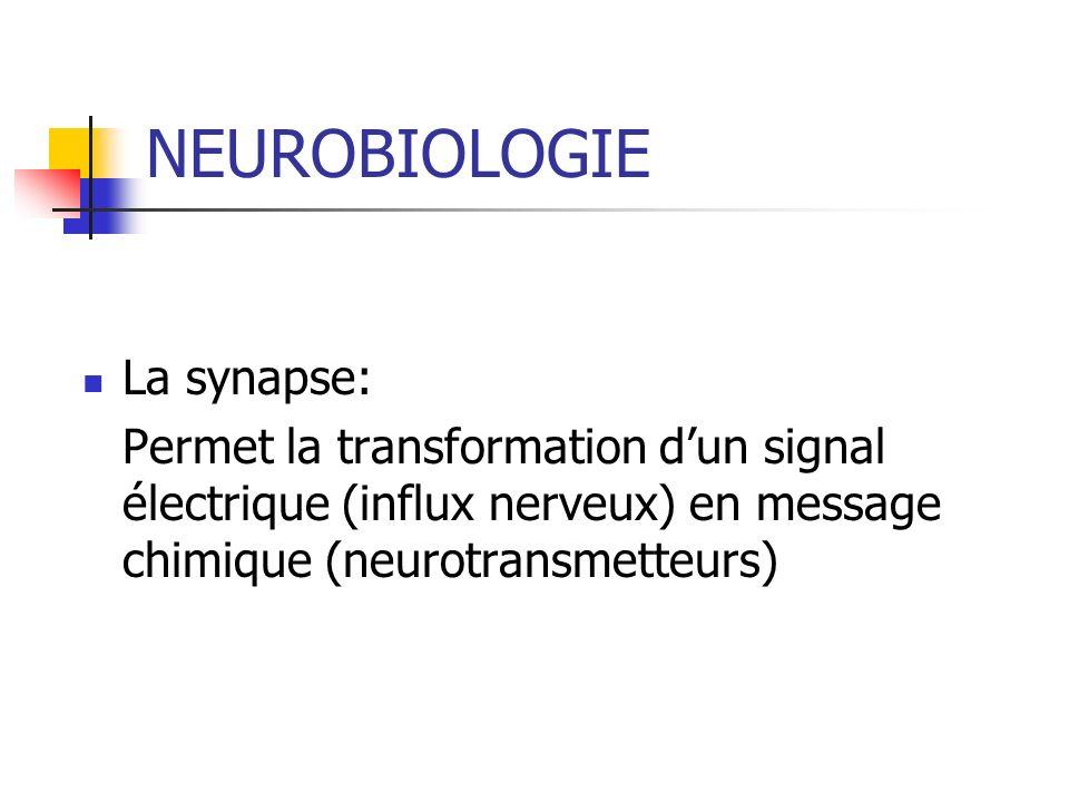 NEUROBIOLOGIE LE SYSTEME DE RECOMPENSE Neurones dopaminergiques Favorise les fonctions vitales Participation à la satisfaction de vivre.