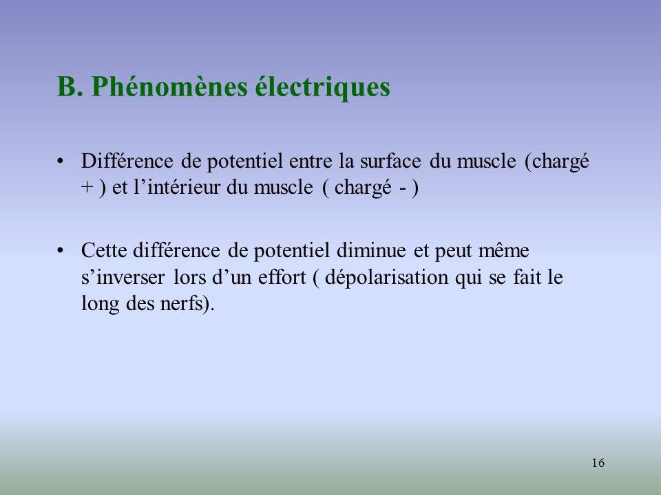 16 B. Phénomènes électriques Différence de potentiel entre la surface du muscle (chargé + ) et lintérieur du muscle ( chargé - ) Cette différence de p
