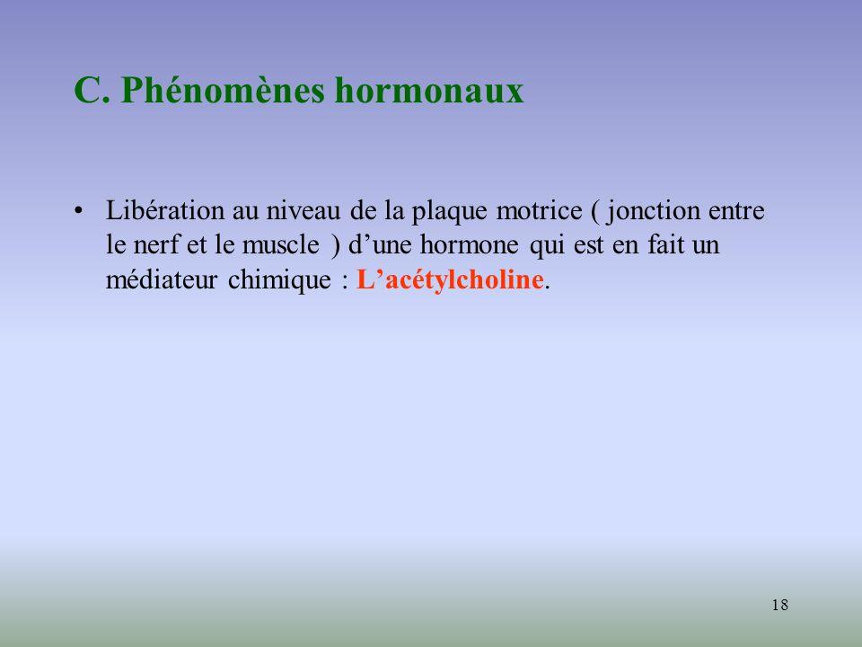 18 C. Phénomènes hormonaux Libération au niveau de la plaque motrice ( jonction entre le nerf et le muscle ) dune hormone qui est en fait un médiateur