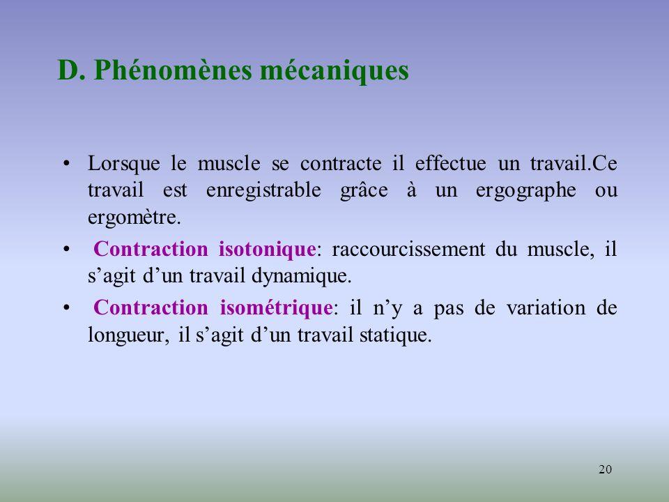 20 D. Phénomènes mécaniques Lorsque le muscle se contracte il effectue un travail.Ce travail est enregistrable grâce à un ergographe ou ergomètre. Con