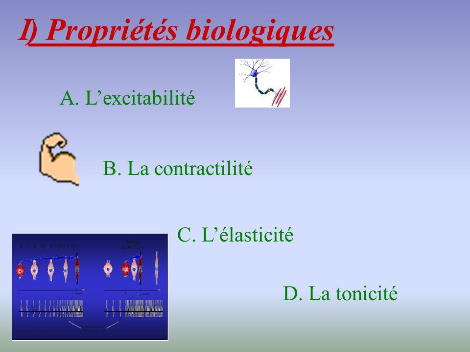 I ) Propriétés biologiques A. Lexcitabilité B. La contractilité C. Lélasticité D. La tonicité