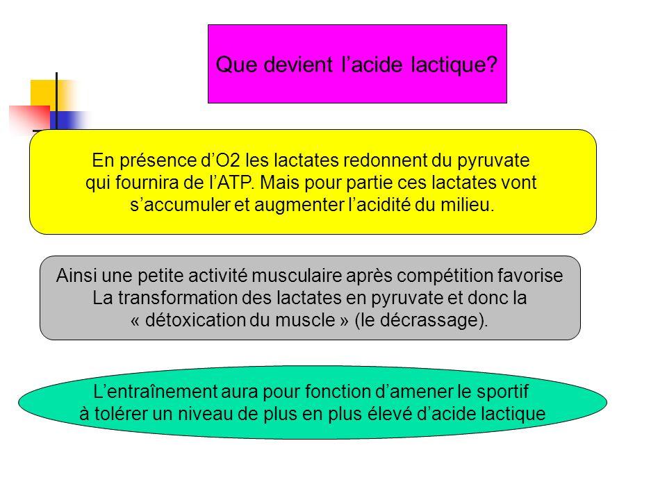 Que devient lacide lactique? En présence dO2 les lactates redonnent du pyruvate qui fournira de lATP. Mais pour partie ces lactates vont saccumuler et
