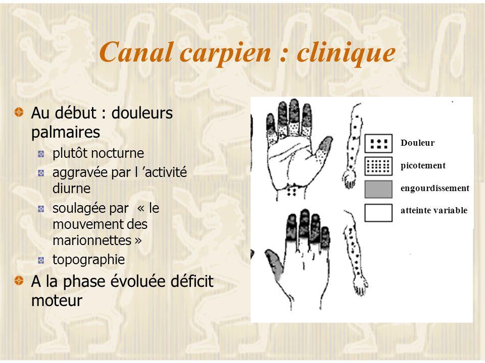 Le canal carpien : anatomie Le nerf médian origine C5-C6 fonction motrice : flexion pouce, doigts, poignet sensitive : pouce index passe dans un canal