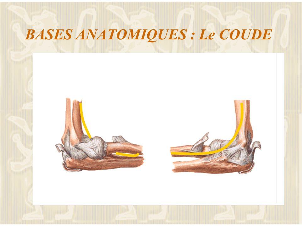 LES DOULEURS DEPAULE Attention aux pathologies dédiées Cours sur la patho scapulo humérale Atteinte acromio-claviculaire Atteinte sterno-claviculaire
