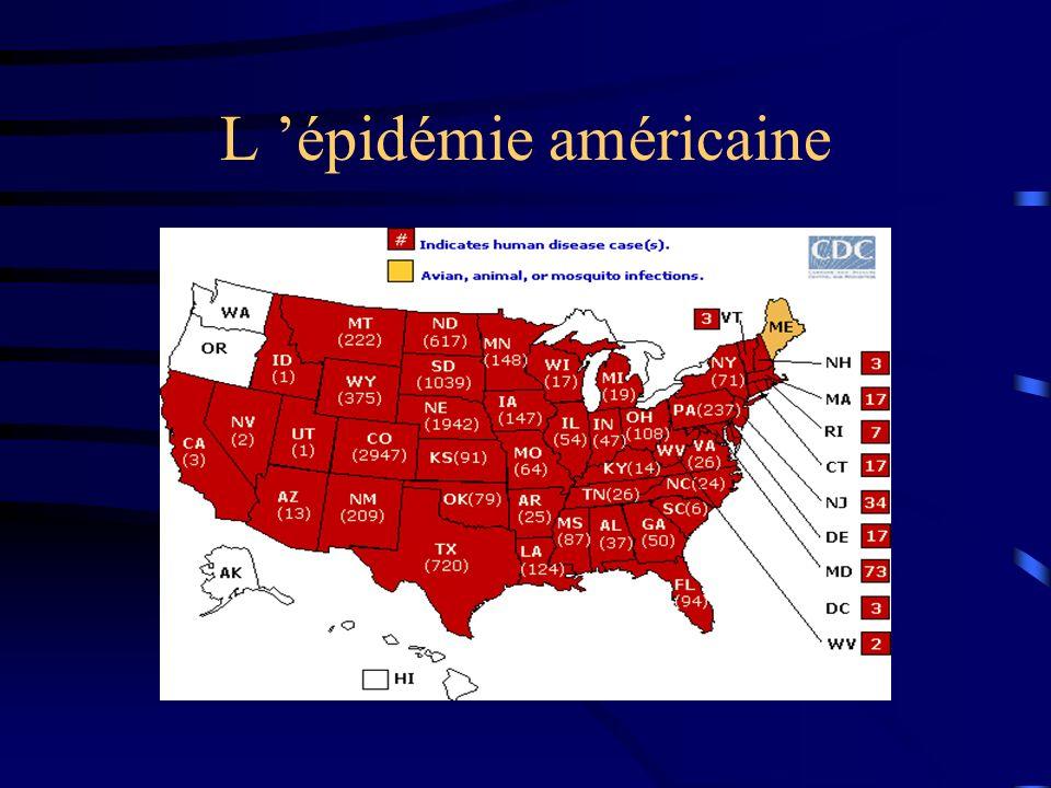 L épidémie américaine