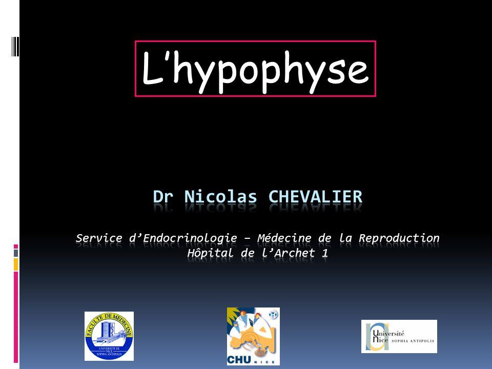 Le système hypothalamo- hypophysaire Système porte donc deux réseaux capillaires reliés en série Sécrétions hormonales sous contrôle neuronal hypothalamique permanent Régulation négative par les tissus cibles périphériques…