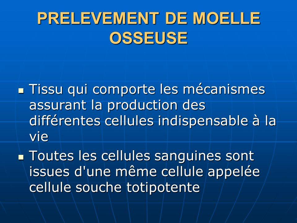 PRELEVEMENT DE MOELLE OSSEUSE Tissu qui comporte les mécanismes assurant la production des différentes cellules indispensable à la vie Tissu qui compo