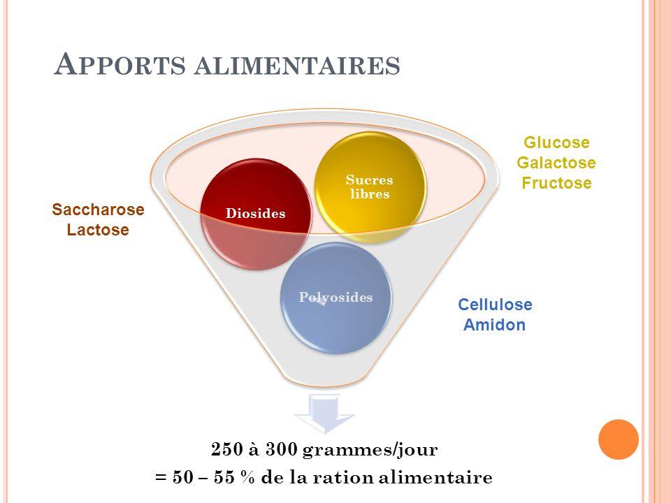 A PPORTS ALIMENTAIRES 250 à 300 grammes/jour = 50 – 55 % de la ration alimentaire PolyosidesDiosides Sucres libres Glucose Galactose Fructose Saccharo
