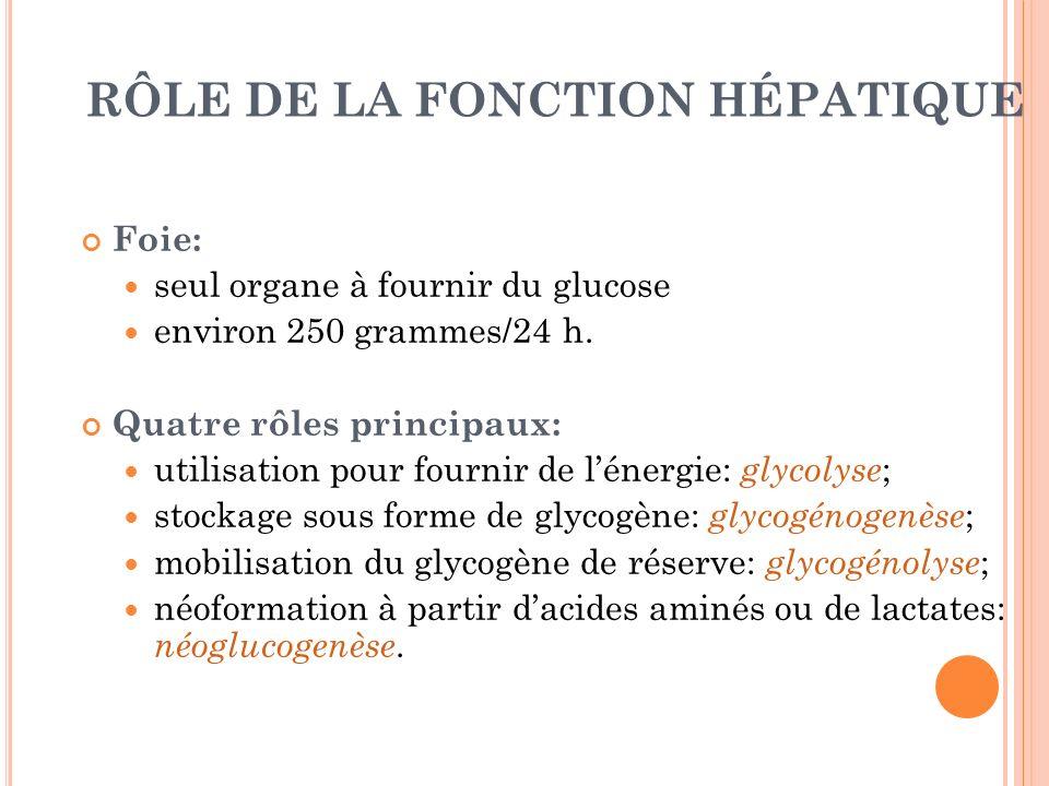 RÔLE DE LA FONCTION HÉPATIQUE Foie: seul organe à fournir du glucose environ 250 grammes/24 h. Quatre rôles principaux: utilisation pour fournir de lé