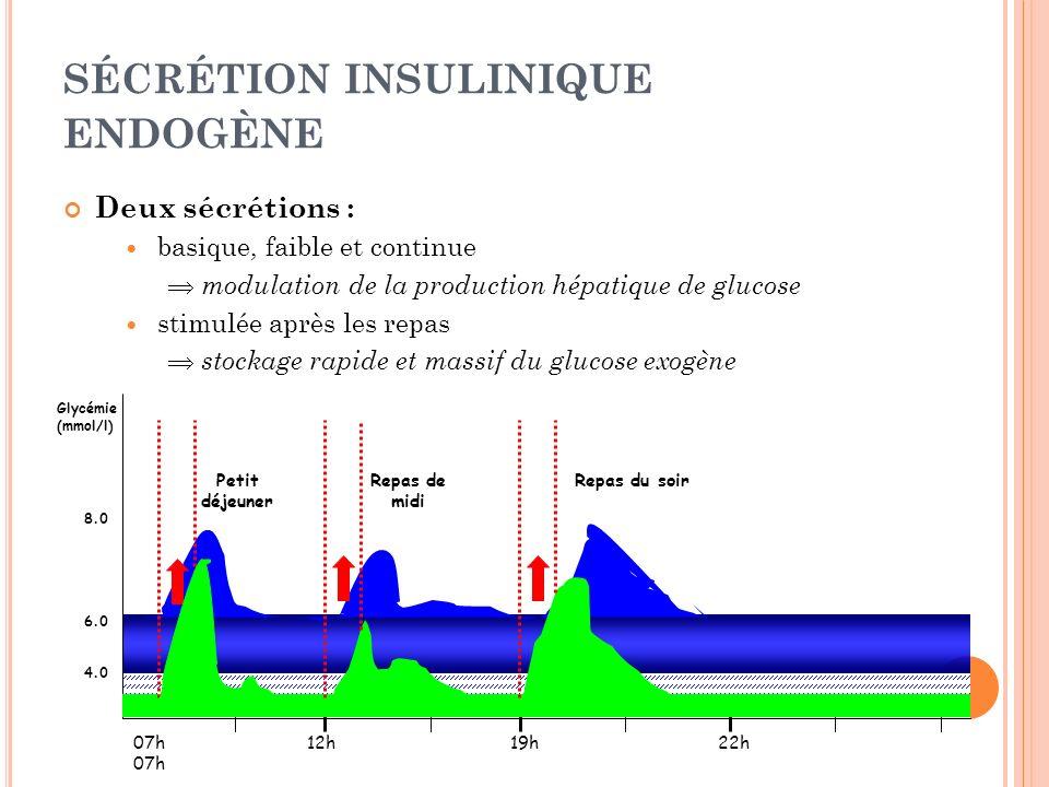 SÉCRÉTION INSULINIQUE ENDOGÈNE Deux sécrétions : basique, faible et continue modulation de la production hépatique de glucose stimulée après les repas