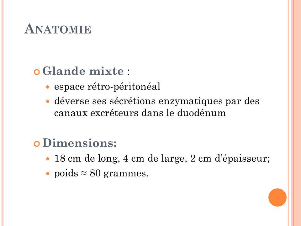 A NATOMIE Glande mixte : espace rétro-péritonéal déverse ses sécrétions enzymatiques par des canaux excréteurs dans le duodénum Dimensions: 18 cm de l