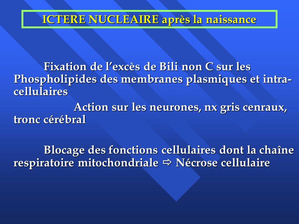 ICTERE NUCLEAIRE après la naissance Fixation de lexcès de Bili non C sur les Phospholipides des membranes plasmiques et intra- cellulaires Action sur