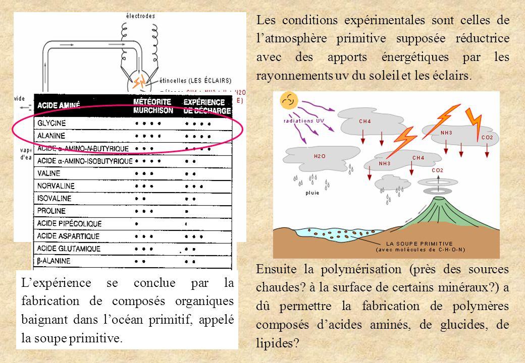 Les conditions expérimentales sont celles de latmosphère primitive supposée réductrice avec des apports énergétiques par les rayonnements uv du soleil