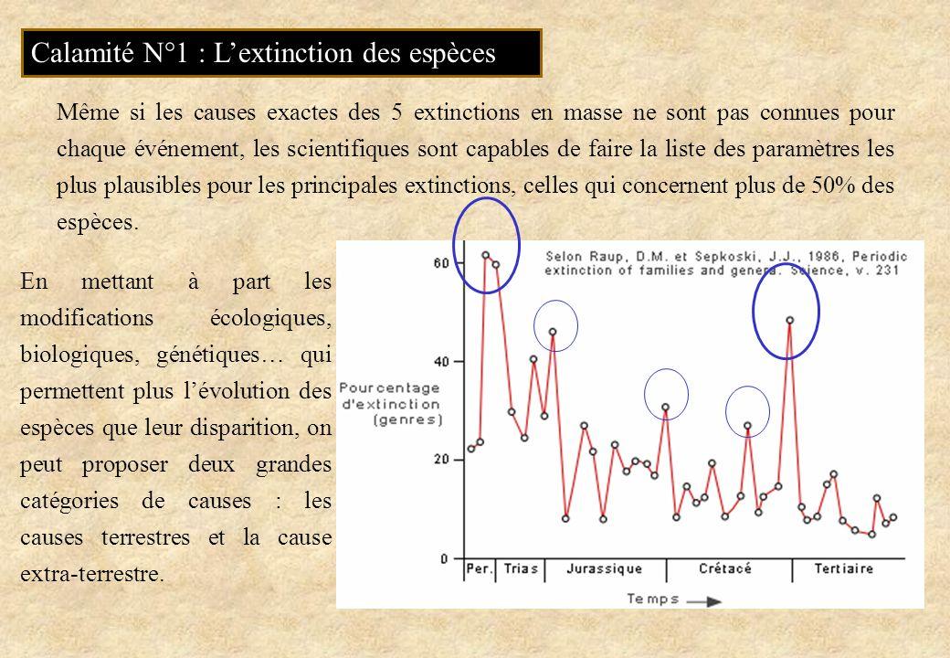 Calamité N°1 : Lextinction des espèces En mettant à part les modifications écologiques, biologiques, génétiques… qui permettent plus lévolution des es