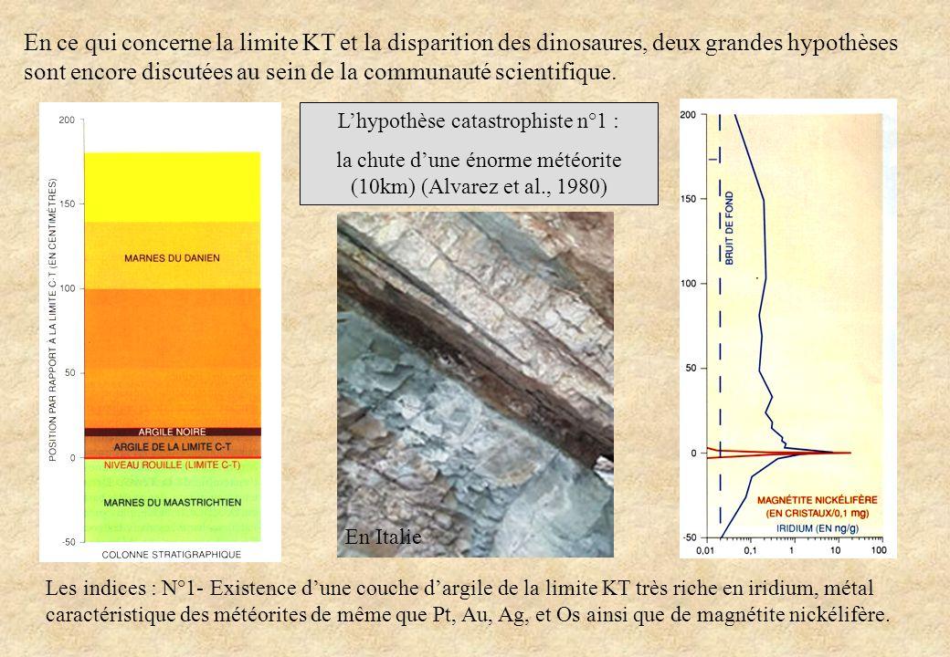 En ce qui concerne la limite KT et la disparition des dinosaures, deux grandes hypothèses sont encore discutées au sein de la communauté scientifique.