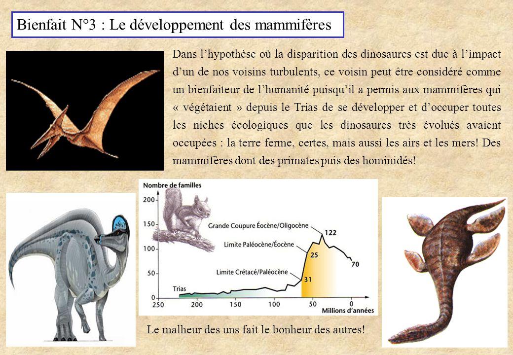 Bienfait N°3 : Le développement des mammifères Dans lhypothèse où la disparition des dinosaures est due à limpact dun de nos voisins turbulents, ce vo