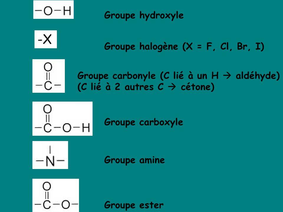 Groupe hydroxyle Groupe carboxyle Groupe carbonyle (C lié à un H aldéhyde) (C lié à 2 autres C cétone) Groupe amine Groupe ester Groupe halogène (X =