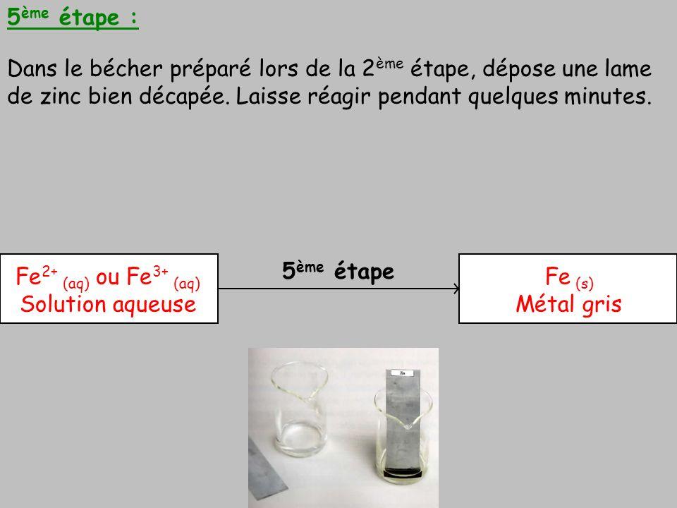 5 ème étape 5 ème étape : Dans le bécher préparé lors de la 2 ème étape, dépose une lame de zinc bien décapée. Laisse réagir pendant quelques minutes.