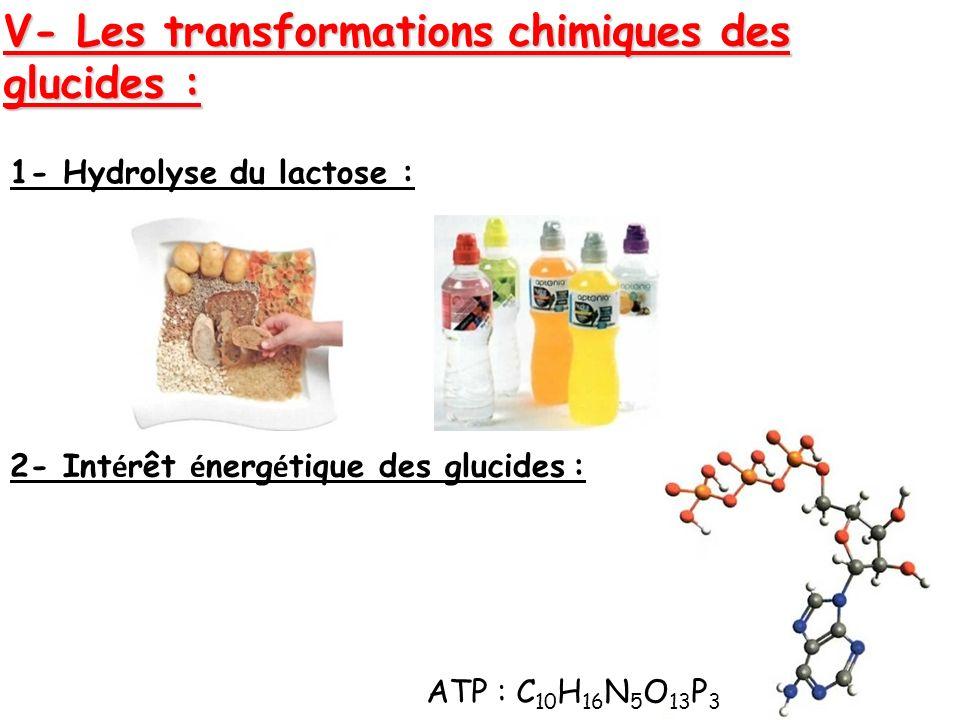 V- Les transformations chimiques des glucides : 1- Hydrolyse du lactose : 2- Int é rêt é nerg é tique des glucides : ATP : C 10 H 16 N 5 O 13 P 3