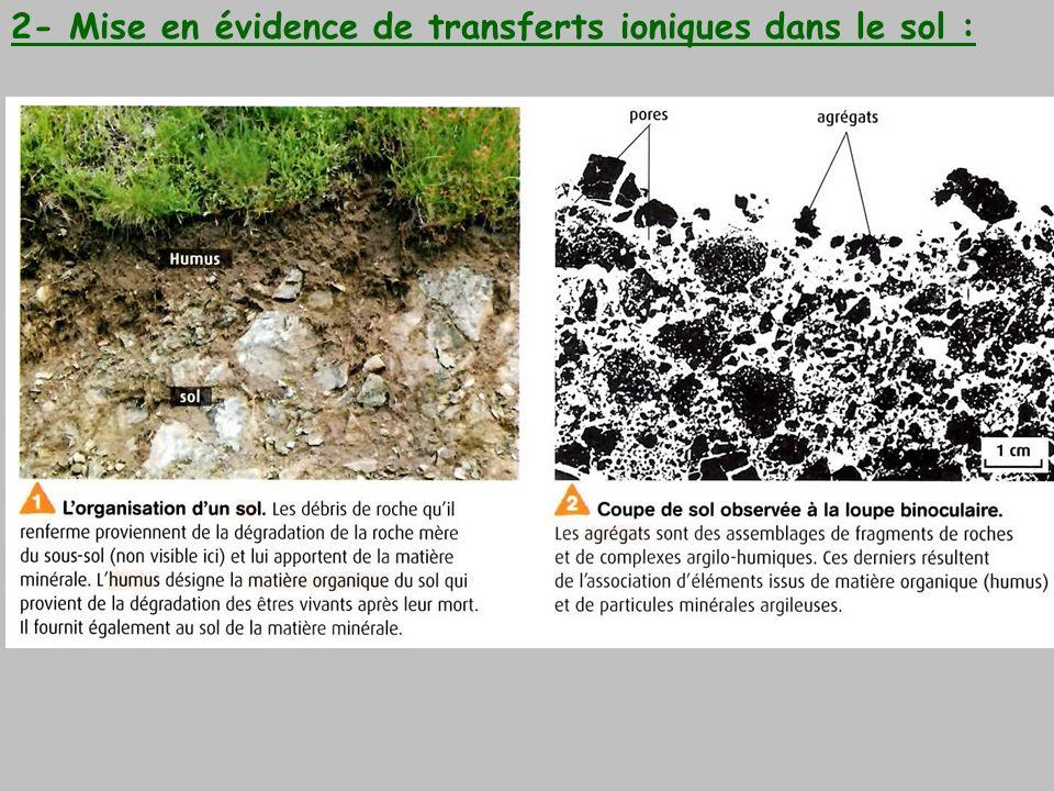 Conclusion : Le complexe argilo-humique (C.A.H) permet de capter les cations (naturellement présents dans le sol ou bien apportés par les engrais) ces derniers sont ainsi en réserve.