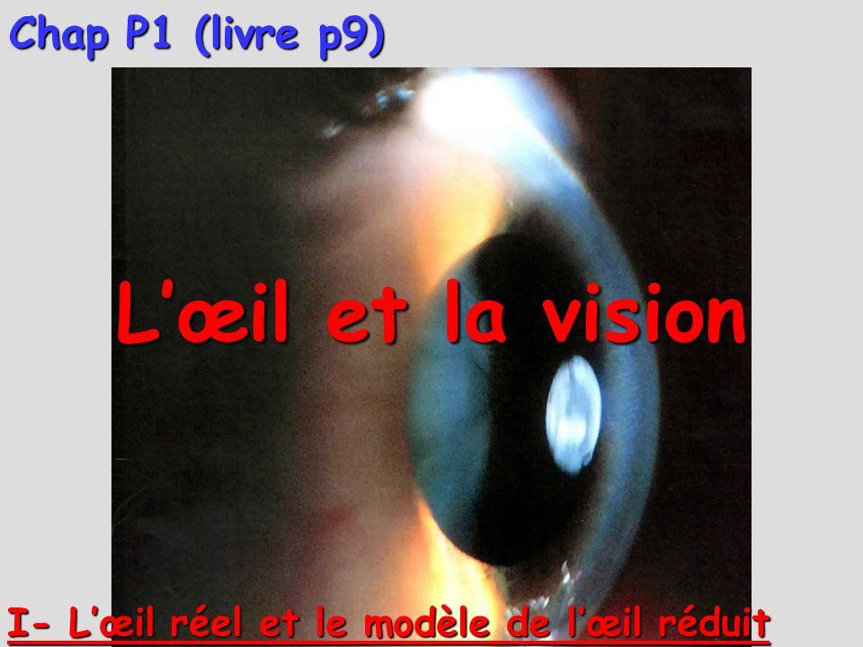 Animation lentille Animation cas 2 Animation cas 3 Animation cas 1 Animation général 4°) Formation dimage et construction géométrique de rayons pour une lentille convergente :