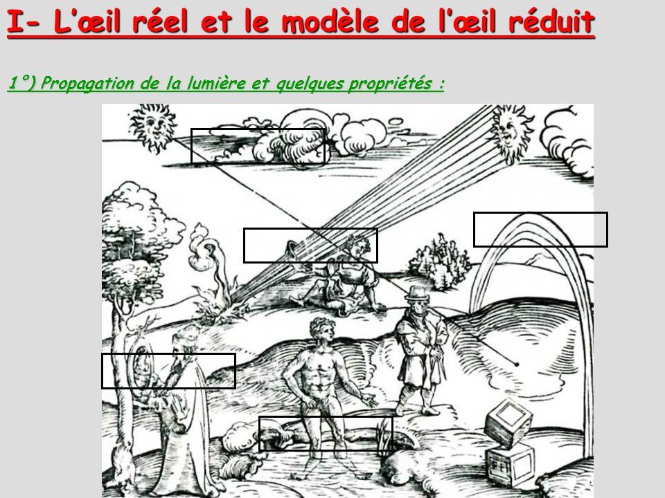 1°) Propagation de la lumière et quelques propriétés : I- Lœil réel et le modèle de lœil réduit