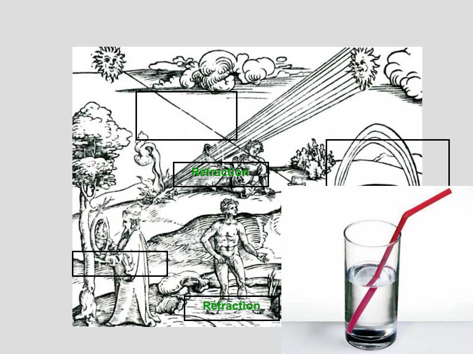Cours : Lœil réel peut être modélisé par lœil réduit avec un diaphragme (liris), une lentille convergente (ensemble des milieux transparents) à distance focale variable et un écran (la rétine).