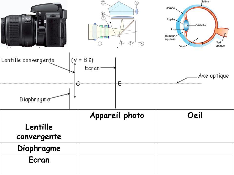 Appareil photoOeil Lentille convergente Diaphragme Ecran
