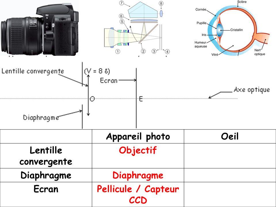 Appareil photoOeil Lentille convergente Objectif Diaphragme EcranPellicule / Capteur CCD