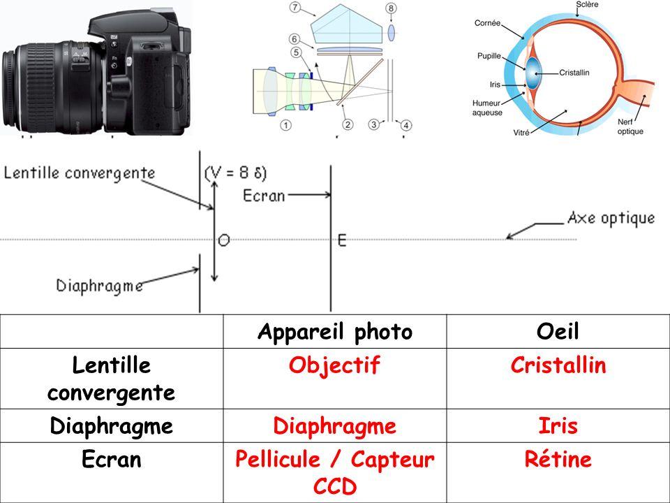 Appareil photoOeil Lentille convergente ObjectifCristallin Diaphragme Iris EcranPellicule / Capteur CCD Rétine