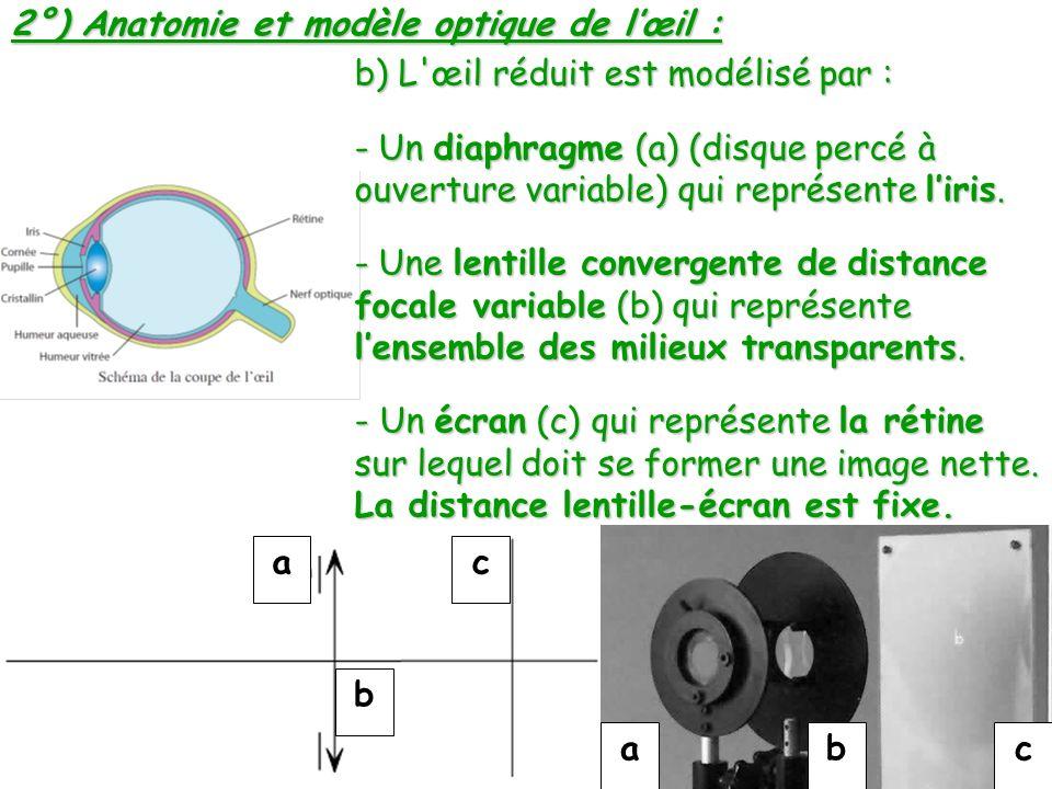 a b c abc b) L'œil réduit est modélisé par : - Un diaphragme (a) (disque percé à ouverture variable) qui représente liris. - Une lentille convergente