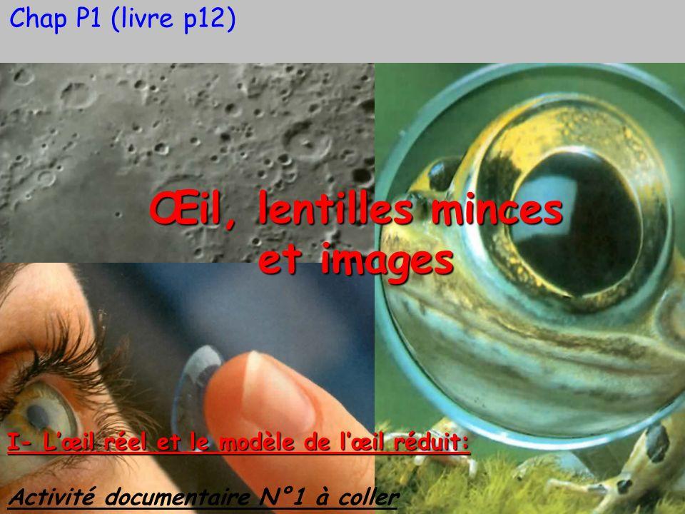 Chap P1 (livre p12) Œil, lentilles minces et images I- Lœil réel et le modèle de lœil réduit: Activité documentaire N°1 à coller