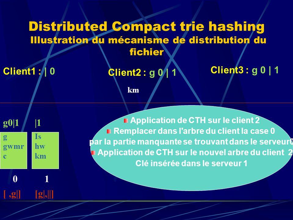 Distributed Compact trie hashing Illustration du mécanisme de distribution du fichier g gwmr c 0 g0|1 [,g|] Client1 : | 0 Client2 : g 0 | 1 Client3 : g 0 | 1 km Is hw km 1 |1 [g|,||] Application de CTH sur le client 2 Remplacer dans l arbre du client la case 0 par la partie manquante se trouvant dans le serveur0 Application de CTH sur le nouvel arbre du client 2 Clé insérée dans le serveur 1