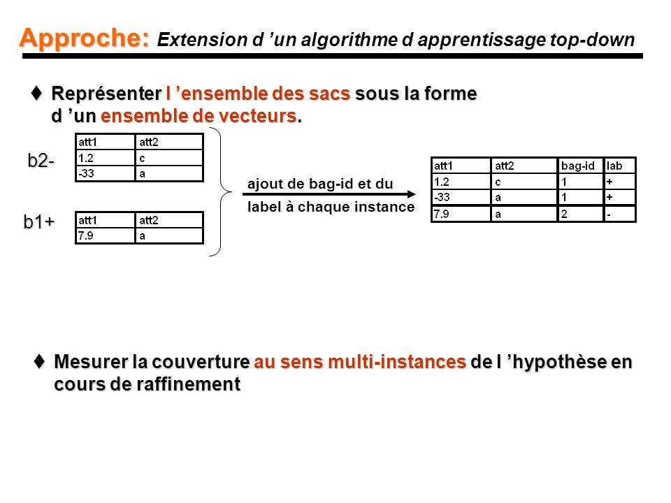 Approche: Approche: Extension d un algorithme d apprentissage top-down Représenter l ensemble des sacs sous la forme d un ensemble de vecteurs.