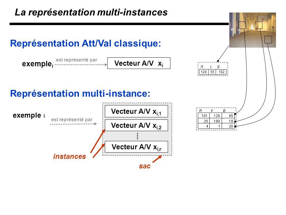 La représentation multi-instances est représenté par Vecteur A/V x i exemple i est représenté par Vecteur A/V x i,1 Vecteur A/V x i,2 Vecteur A/V x i,r exemple i instances sac Représentation Att/Val classique: Représentation multi-instance: RVB 12855182