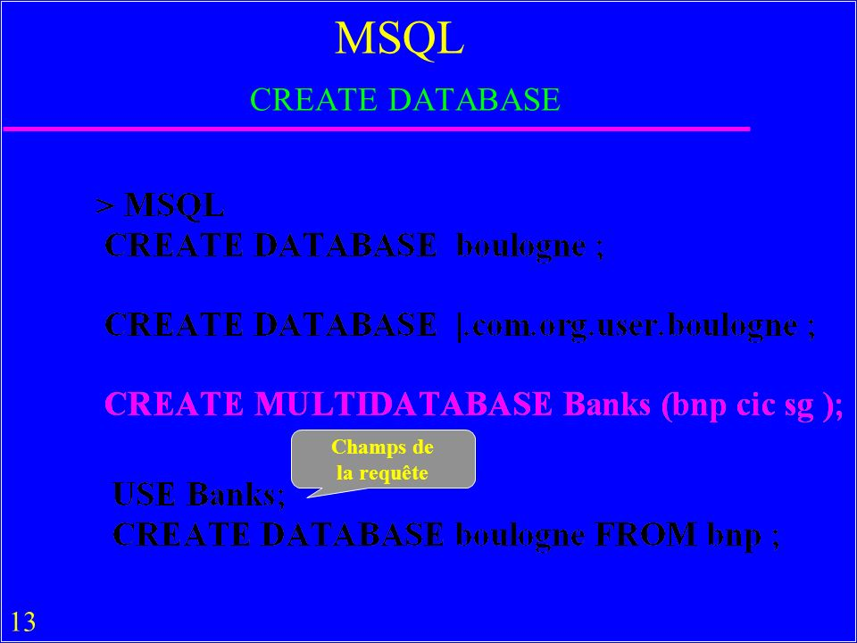 13 MSQL CREATE DATABASE Champs de la requête