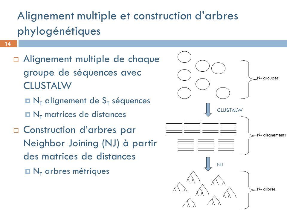 14 Alignement multiple et construction darbres phylogénétiques Alignement multiple de chaque groupe de séquences avec CLUSTALW N T alignement de S T séquences N T matrices de distances Construction darbres par Neighbor Joining (NJ) à partir des matrices de distances N T arbres métriques N T groupes CLUSTALW NJ N T alignements N T arbres
