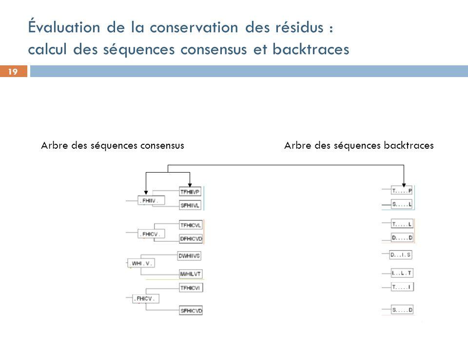 19 Évaluation de la conservation des résidus : calcul des séquences consensus et backtraces Arbre des séquences consensus Arbre des séquences backtraces
