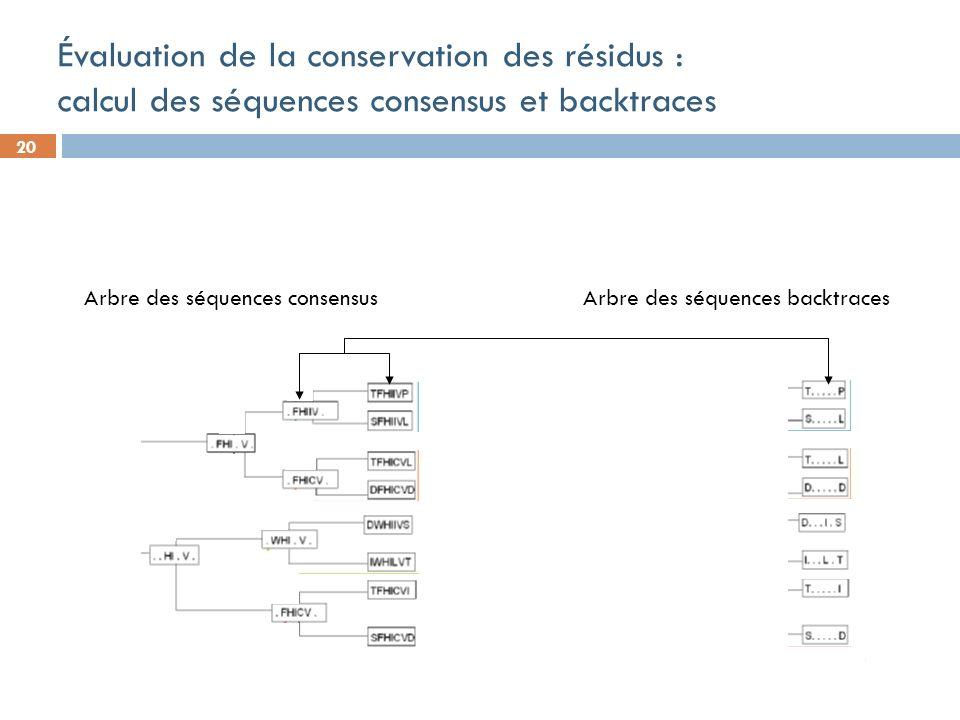20 Évaluation de la conservation des résidus : calcul des séquences consensus et backtraces Arbre des séquences consensus Arbre des séquences backtraces