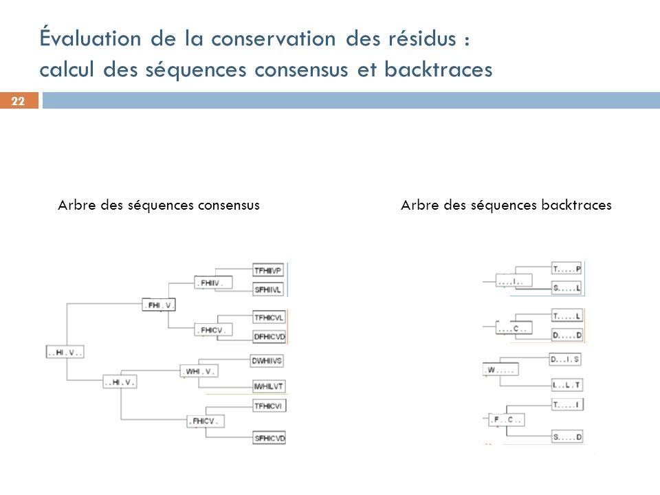 22 Évaluation de la conservation des résidus : calcul des séquences consensus et backtraces Arbre des séquences consensus Arbre des séquences backtraces