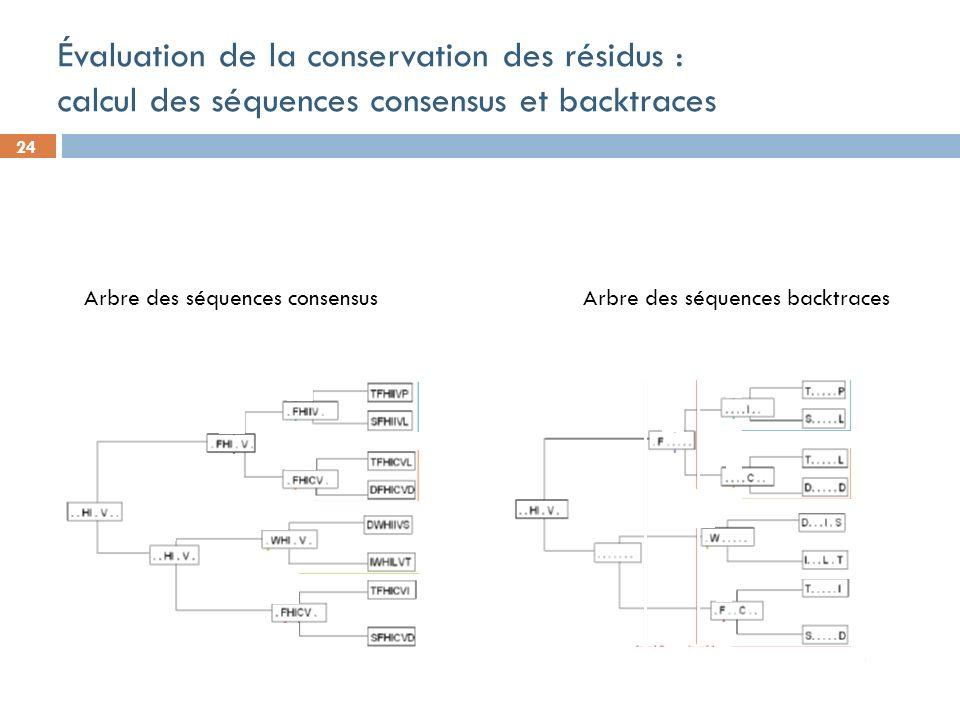 24 Évaluation de la conservation des résidus : calcul des séquences consensus et backtraces Arbre des séquences consensus Arbre des séquences backtraces
