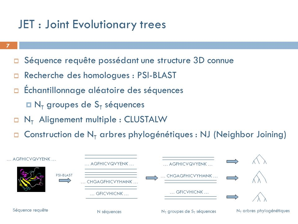 7 JET : Joint Evolutionary trees Séquence requête possédant une structure 3D connue Recherche des homologues : PSI-BLAST Échantillonnage aléatoire des
