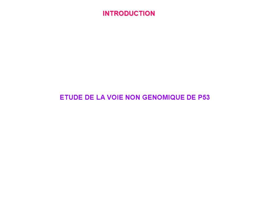 ETUDE DE LA VOIE NON GENOMIQUE DE P53 INTRODUCTION