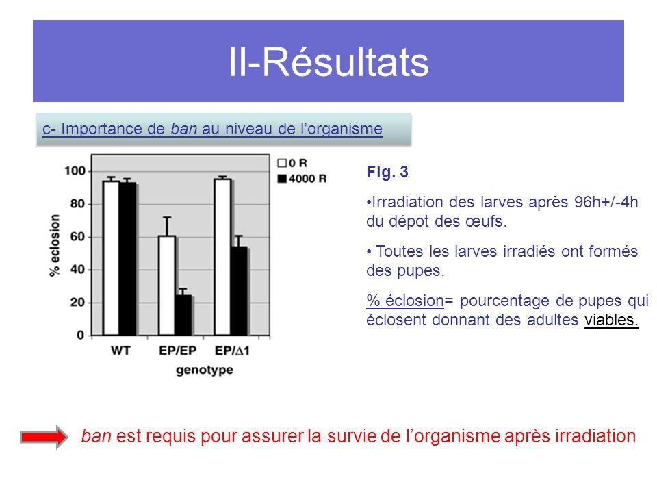 II-Résultats Fig.3 Irradiation des larves après 96h+/-4h du dépot des œufs.