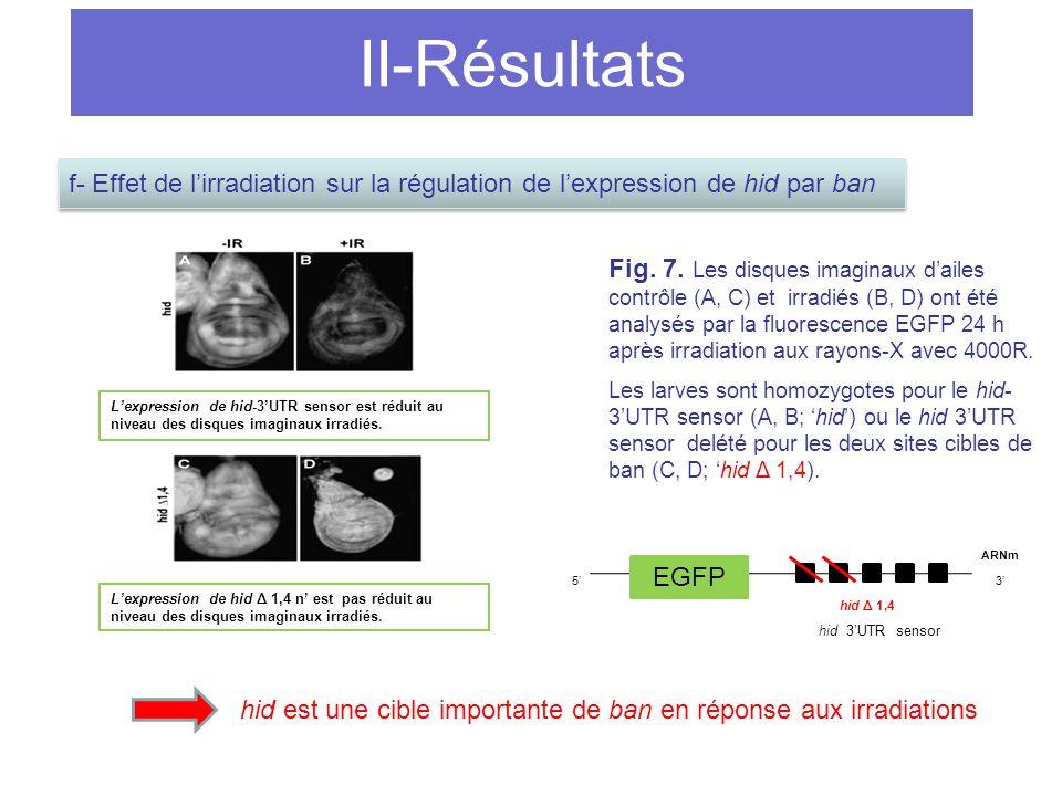 II-Résultats Fig.7.
