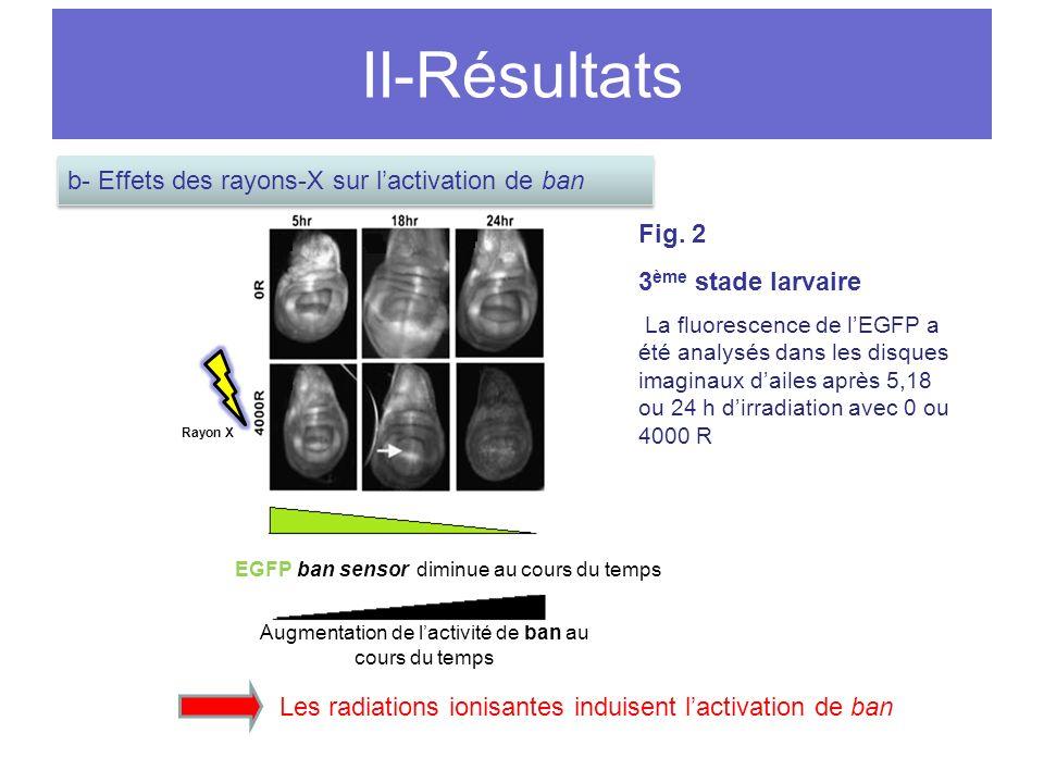 II-Résultats Fig.