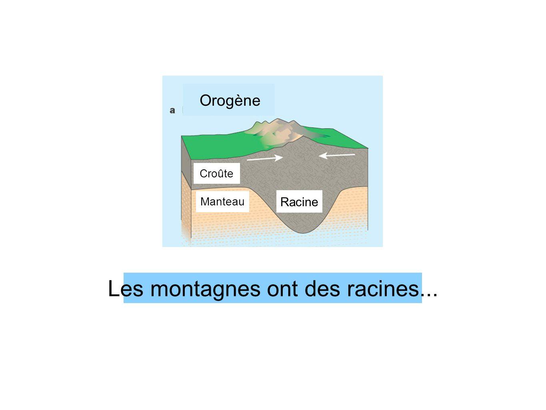Les montagnes ont des racines... RacineManteau Croûte Orogène Racine Orogène