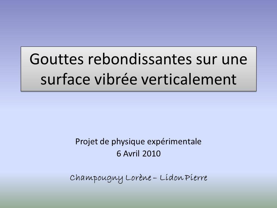 Gouttes rebondissantes sur une surface vibrée verticalement Projet de physique expérimentale 6 Avril 2010 Champougny Lorène – Lidon Pierre
