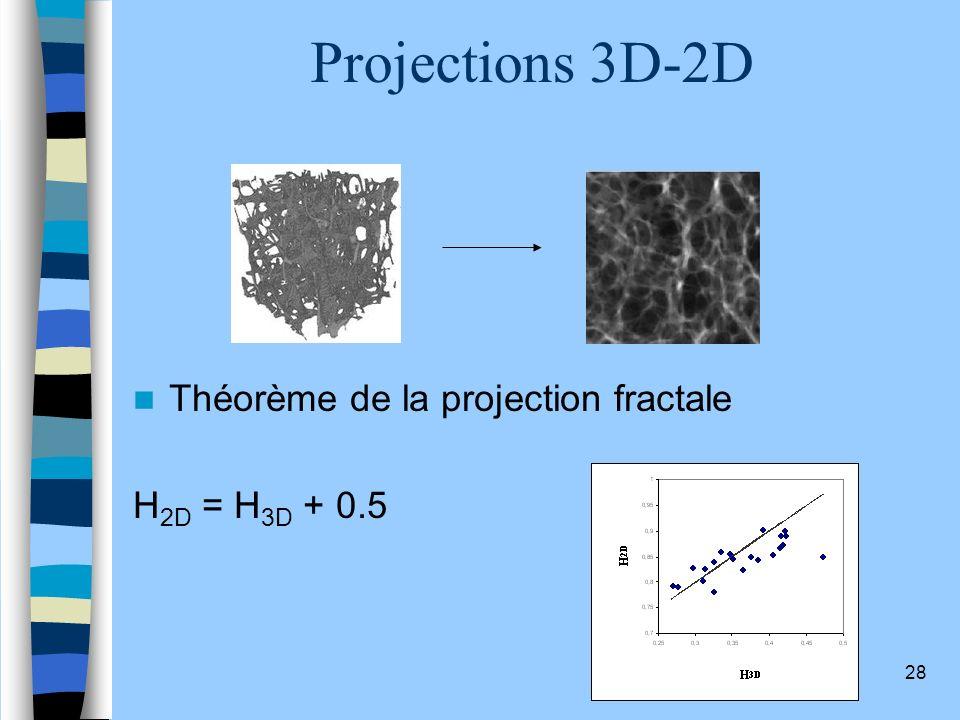 28 Projections 3D-2D Théorème de la projection fractale H 2D = H 3D + 0.5